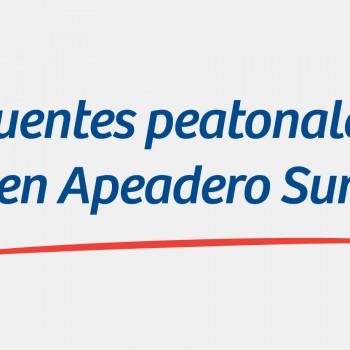 Puentes-peatonales-Apeadero-Sur